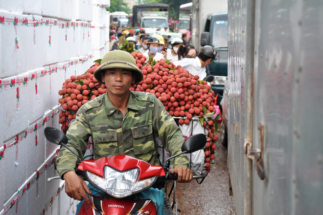 Traffic Jam due to lychee season-2
