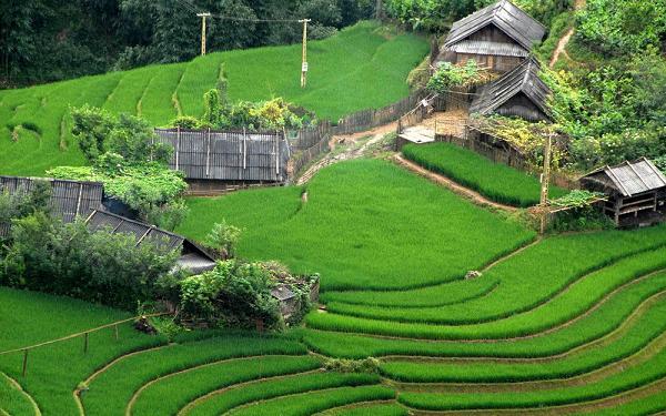 在亚洲旅行-4越南图片