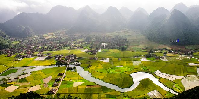 Bac-Son-rice-fields-1