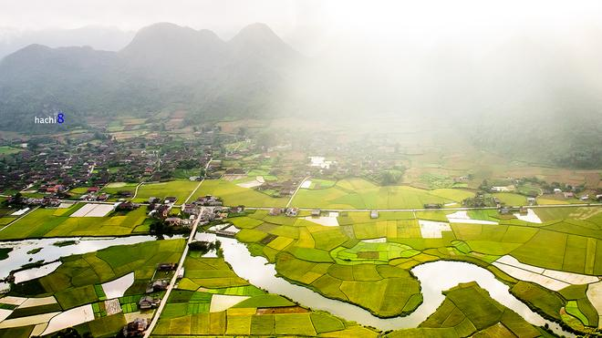Bac-Son-rice-fields-4