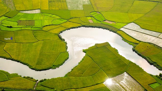 Bac-Son-rice-fields-5