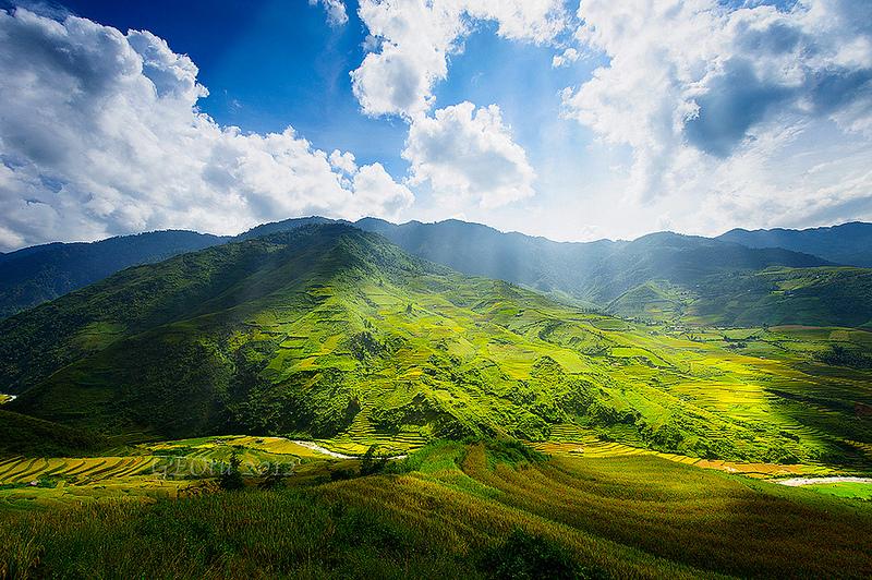 高山谷后, Mu Cang Chai (安沛省) - 隐藏在雾气
