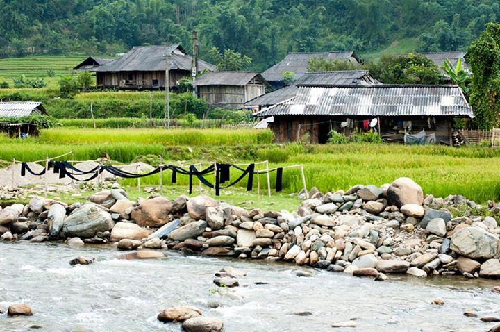 Come-MuCangchai-30