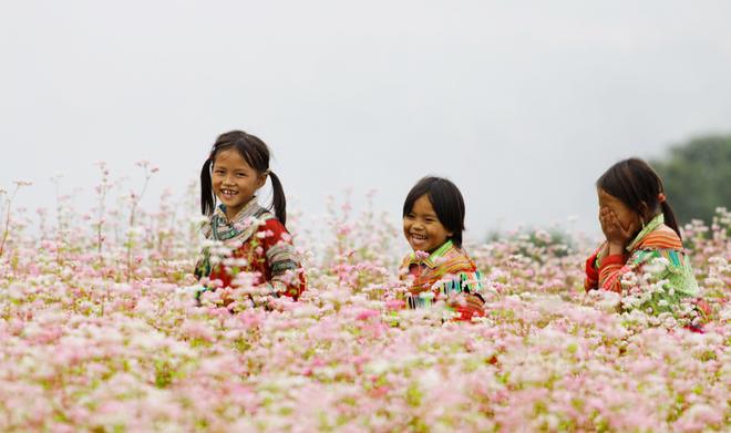 Xi-Man-flower-Dreieck-sensorisch-mach-4