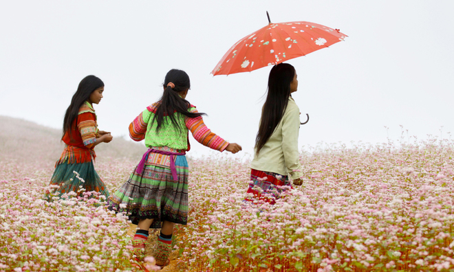 XI-マン・花・三角形の感覚マッハ7