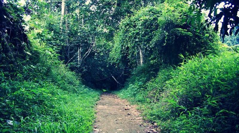 треккинг к Как Фуонг национальный парк