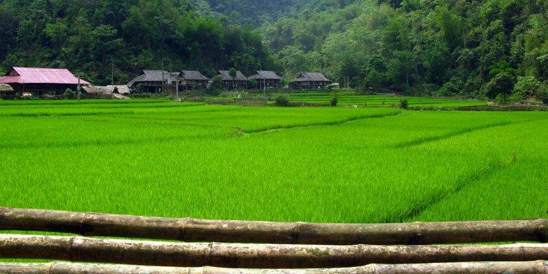 il trekking a Mai Chau