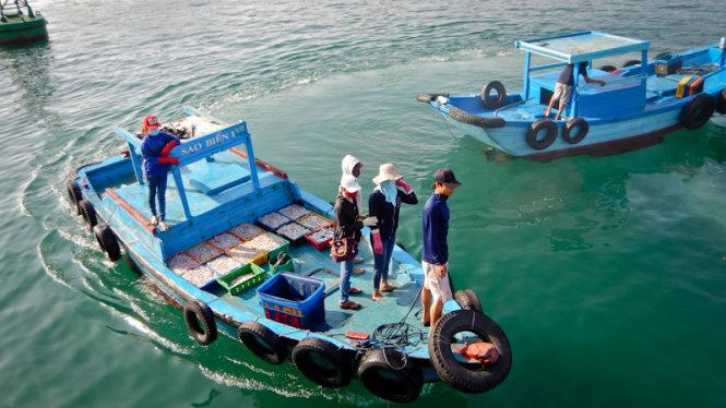 In den frühen Morgenstunden, Boote frische Tintenfische Dock in Phu Quy Port tragen an Händler zu verkaufen.