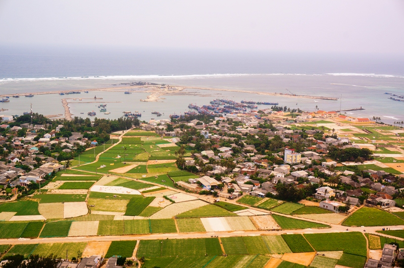 At this time, Ly Son farmers are in onion season. Vast fields of green onion from above looks like inland rice fields.