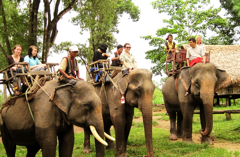 Ride elephants in Buon Don