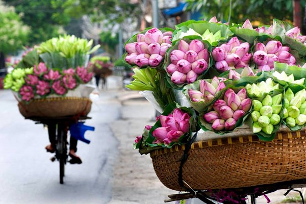 Flower street vendor in Hanoi