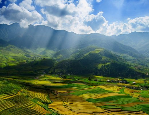vietnam Autumn, Mu Cang Chai