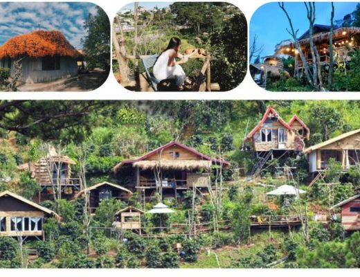 Andante Farm & Lodge Homestay