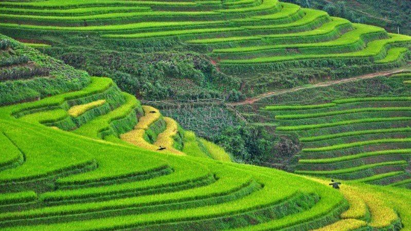 沙巴和宁平被列为亚洲新兴目的地